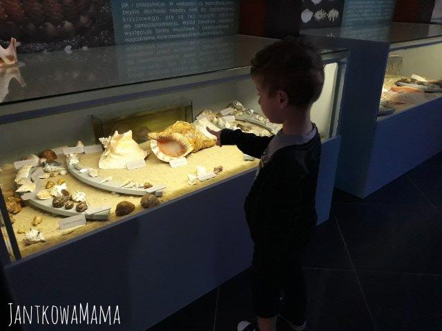 Bliźniaki po raz pierwszy w muzeum.