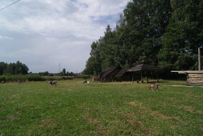 Białogród. Osada Warowna z X w.